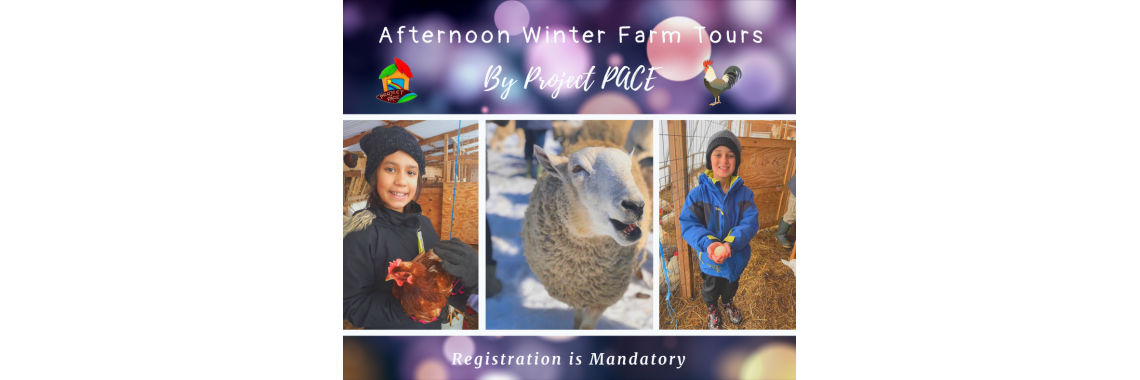 Winter Farm Tours | afternoon
