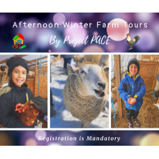 Winter Farm Tour | afternoon