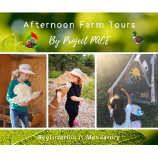 Summer Farm Tours | afternoon