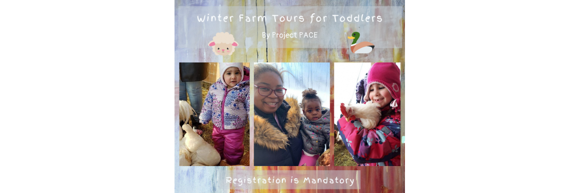 Winter Farm Tours for Toddlers